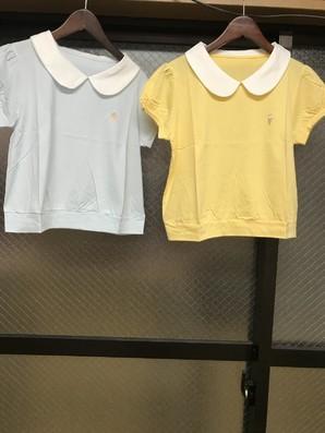 『CandyGlam』 襟付きTシャツ 二色展開の24枚セット キャンディーグラマー