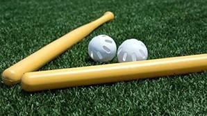 GWセール!遊んじゃお![Wiffle Ball] ウィッフルボール+バット
