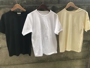 婦人 無地Tシャツ レディース 綿100% フリーサイズ